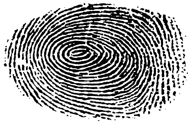 Nuestras huellas dactilares pueden decirnos mucho sobre nosotros mismos