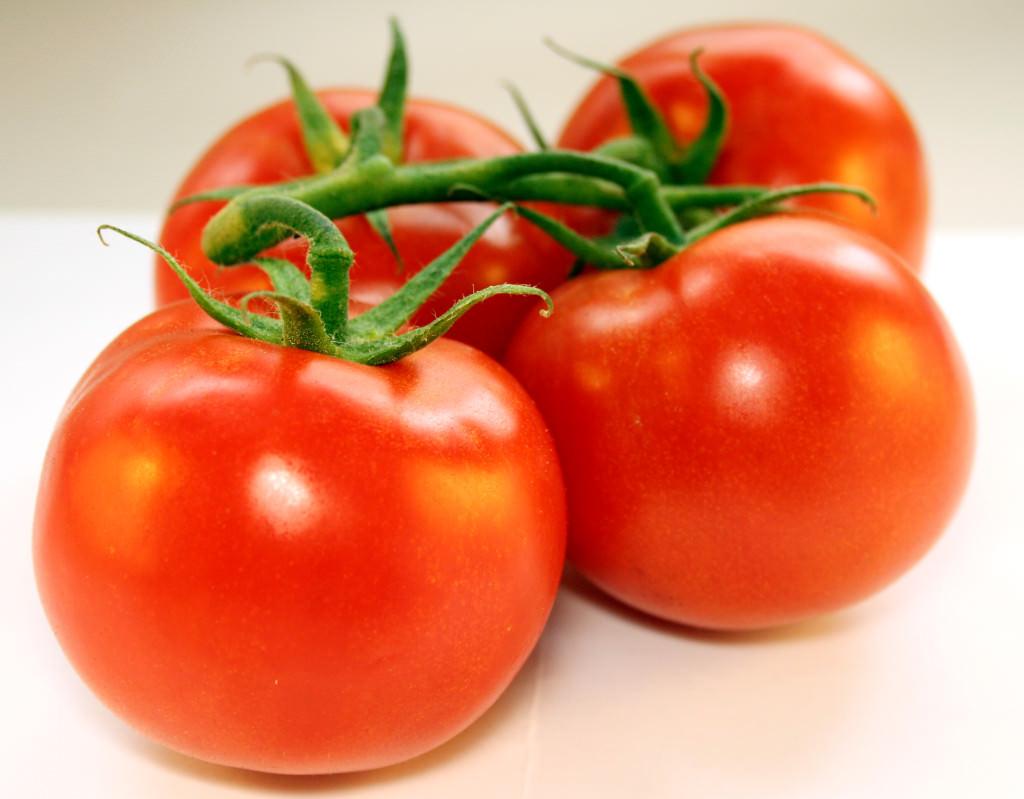 Él pone 4 rodajas de tomate en una olla con tierra