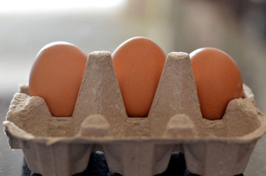 Estás botando los cartones y las cáscaras de huevo vacíos